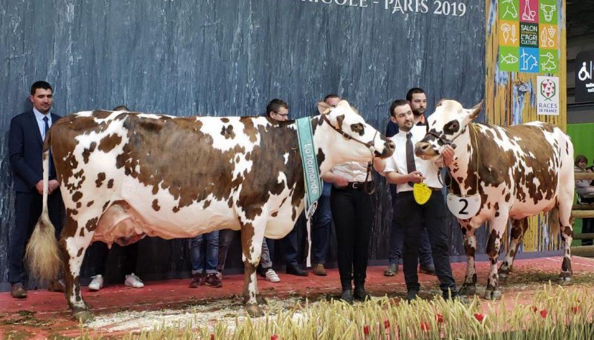 2019 Paris Champions resized